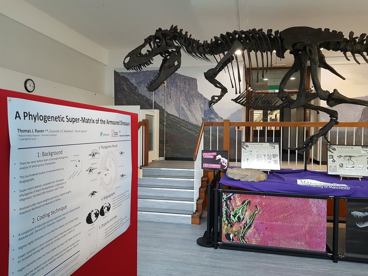 Come see the progress on my PhD on armoured dinosaur evolution at the #SVPCA2018 poster session later today - I&#39;ll be next to the giant chicken #NHMdino #phdlife<br>http://pic.twitter.com/0ajr3s1Ely