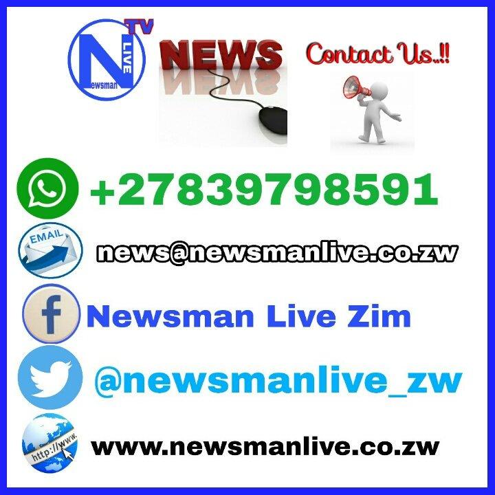 newsman live zim