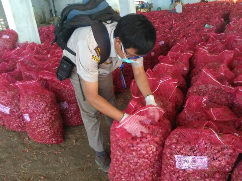 Ekspor 110 ton bawang merah ke Thailand