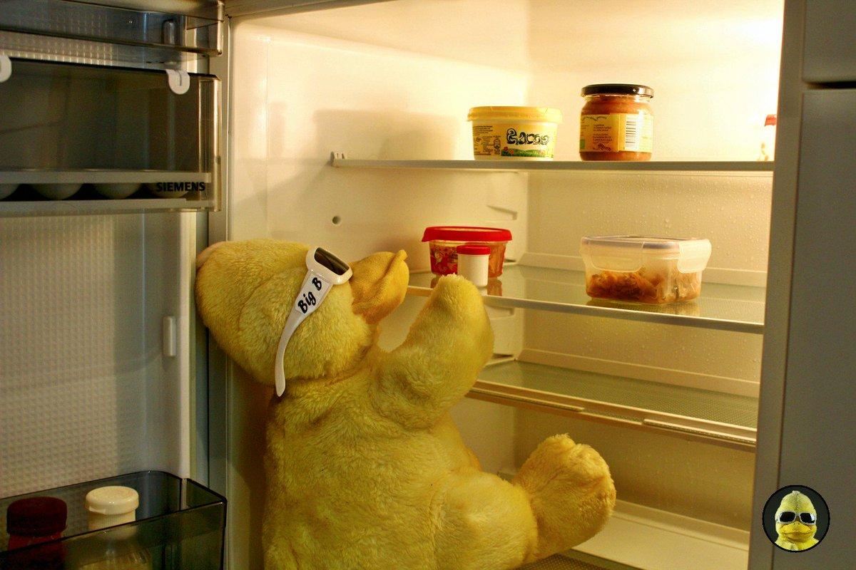 Siemens Kühlschrank Hört Nicht Auf Zu Piepen : Kühlschrank piept brauche dringend hilfe wohnmobil forum seite