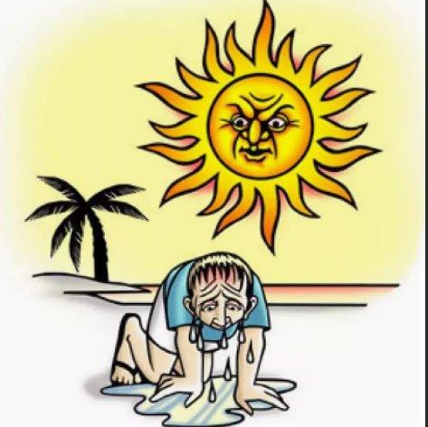 Картинки смешные жара и солнце