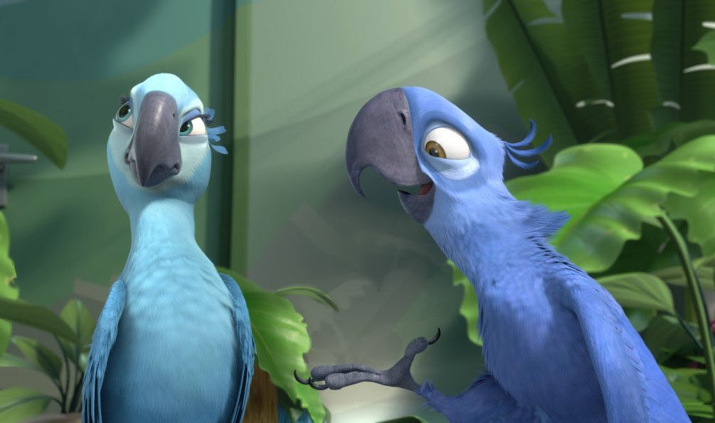The blue macaw parrot that inspired 'Rio' is now officially extinct in the wild https://t.co/jzu5MlqcLM