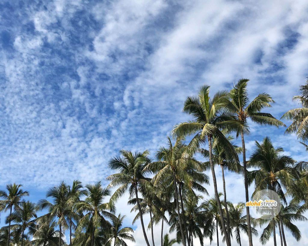 アロハストリート On Twitter ハワイの今週の壁紙 空が高くて