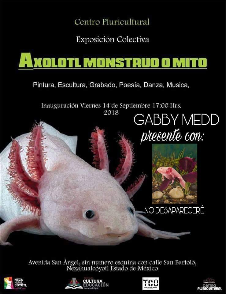 Gabriela Medrano (@GabbyMedd) | Twitter