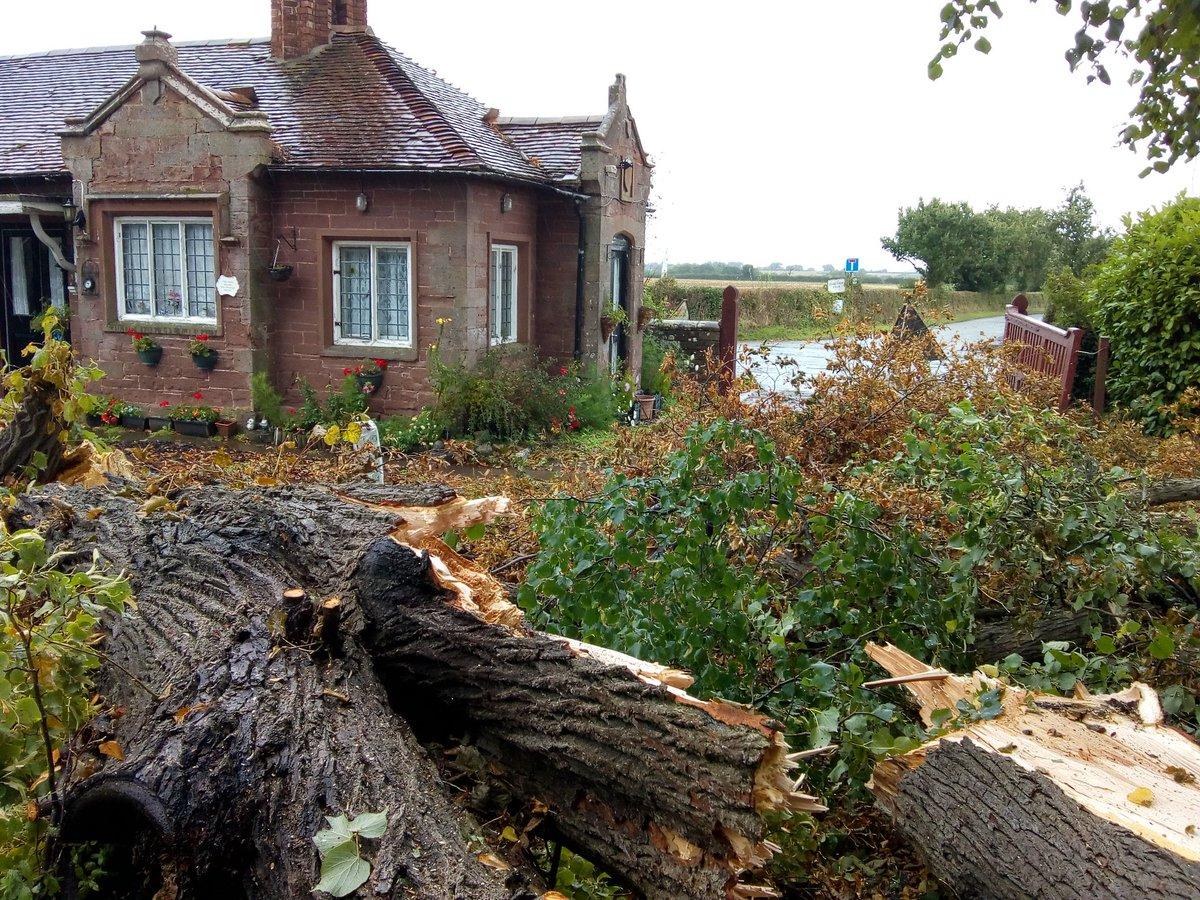 Treeby Estate