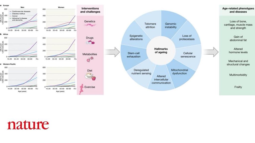 Review in @nature on 'Facing #global challenges of #aging'. Longer human lives have led to global burden of late-#life #disease. Lifestyle changes (#diet/#exercise) & #medical #research innovations are needed to prevent disease & increase late-life #health http://go.nature.com/2PJwmNJ