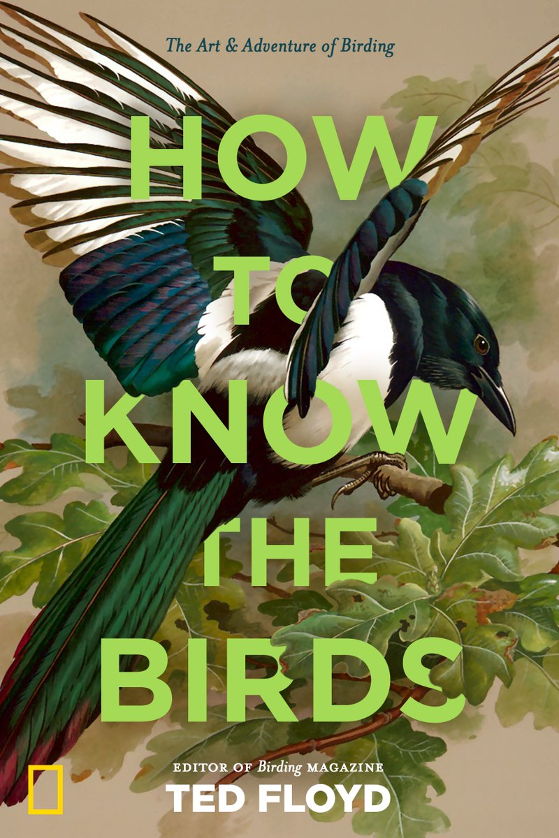 Coming soon! How to Know the Birds, a manifesto for nature study in the emerging post-birding era. Which is to say, Birding and wildlife watching are more awesome than ever. Learn more & pre-order here: tinyurl.com/y9ywqw6y