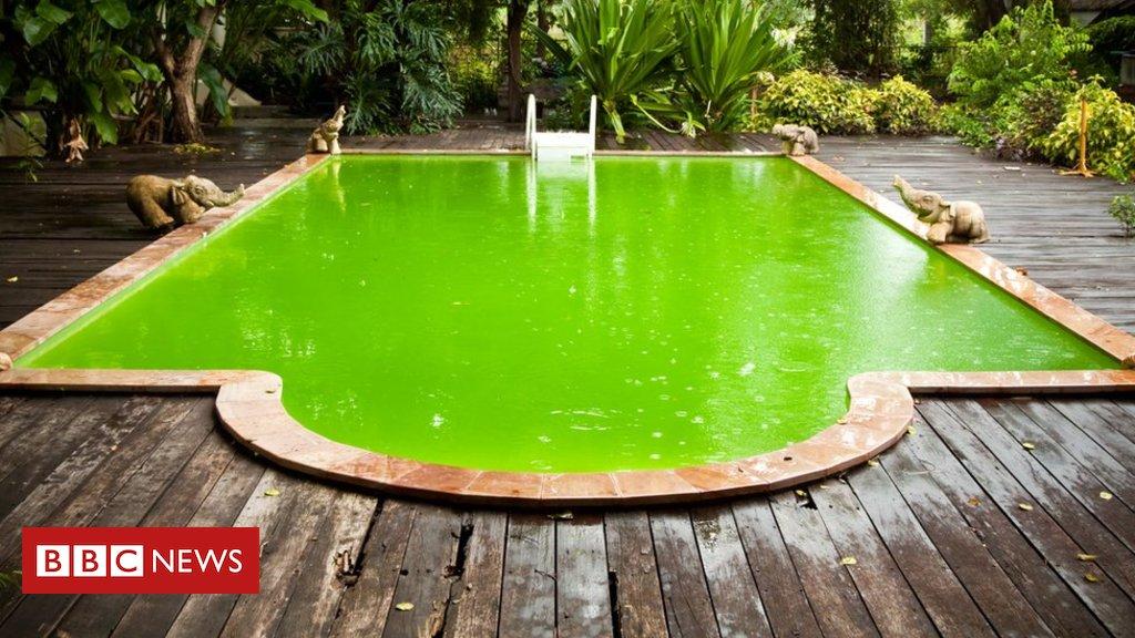 #ArquivoBBC As doenças que você pode pegar em piscinas malcuidadas - e como se proteger https://t.co/bNJ19ez7pO https://t.co/c22qlehE3g