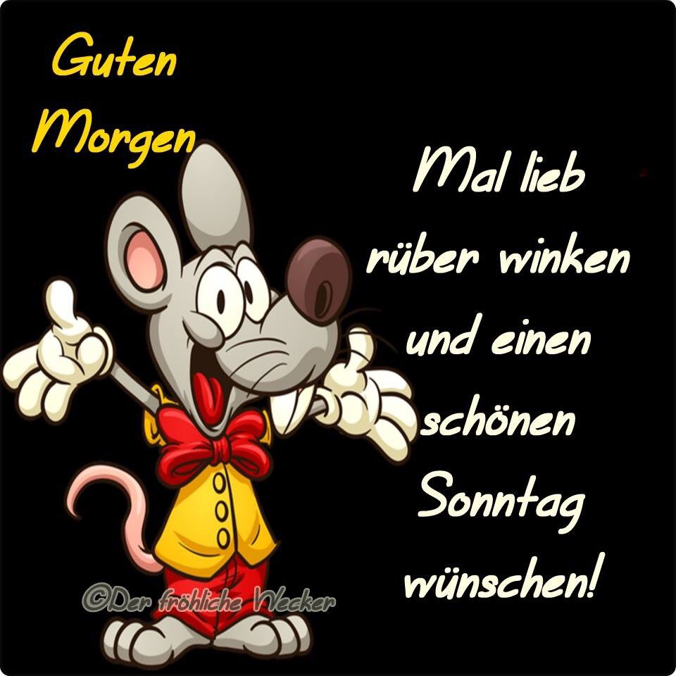 Peter Scheibel On Twitter Schönen Sonntagmorgen Liebe