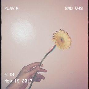 ⭐️💫 // #depression #depressed #sad #flower #aesthetic #suicide #selfhelp #help #StopSuicide #love #loveyourself #floweraesthetic #glitch #glitchaesthetic #hate #leavemealone