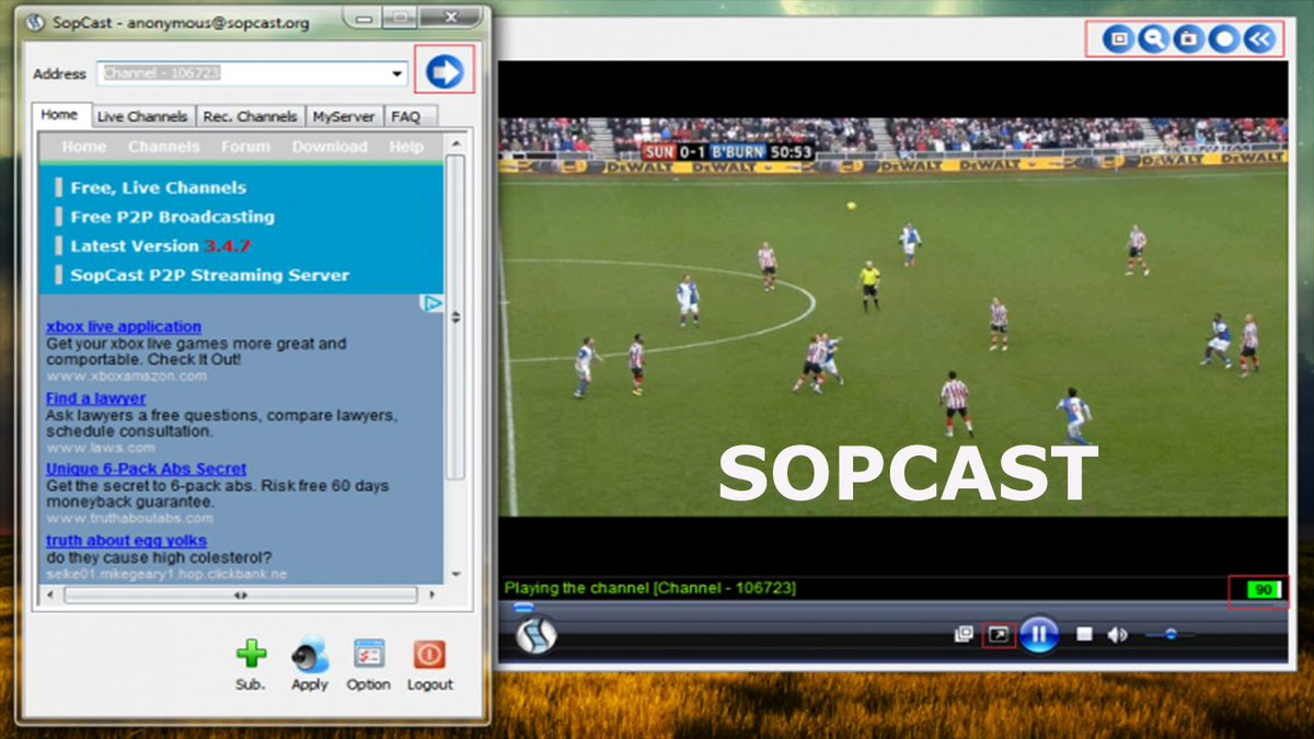 Sopcast porn live sex photo porn archive