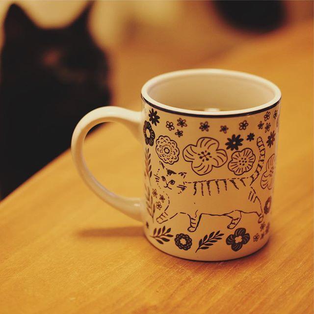 test ツイッターメディア - 最近買ったかわいいちゃん。 #ねこ #マグカップ #cat #mugcup #セリア https://t.co/07LNGVUK7a https://t.co/cWRvS4X7K2