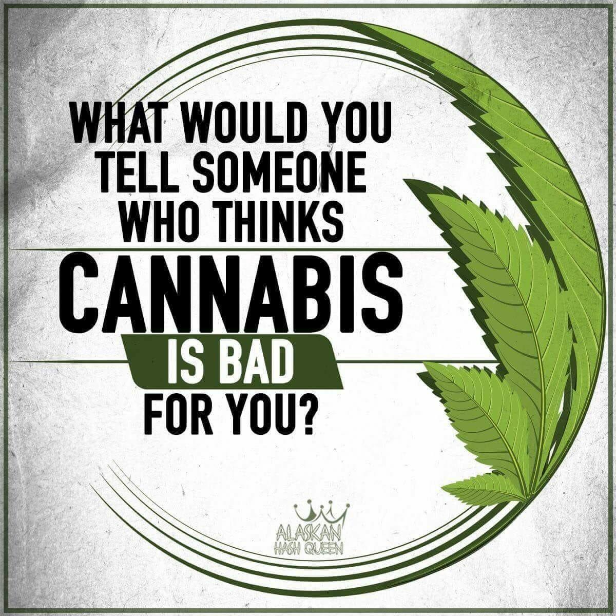 i might tell them to google these 3: #endocannabinoids #RaphaelMechoulam #phytocannabinoids