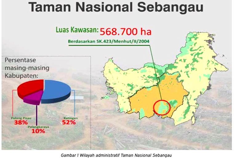 Agungnugrohozaini tapirunand twitter 0 replies 38 retweets 30 likes ccuart Image collections