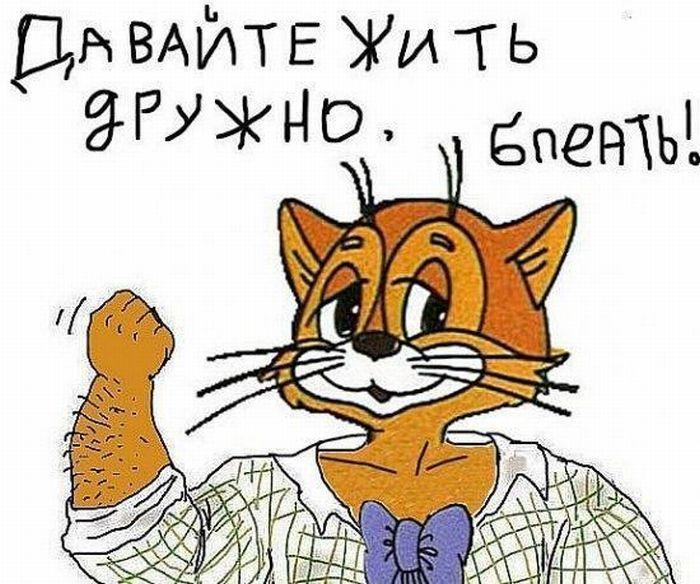Русские, кот леопольд картинки смешные