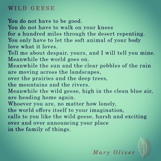 Happy Birthday, Mary Oliver.