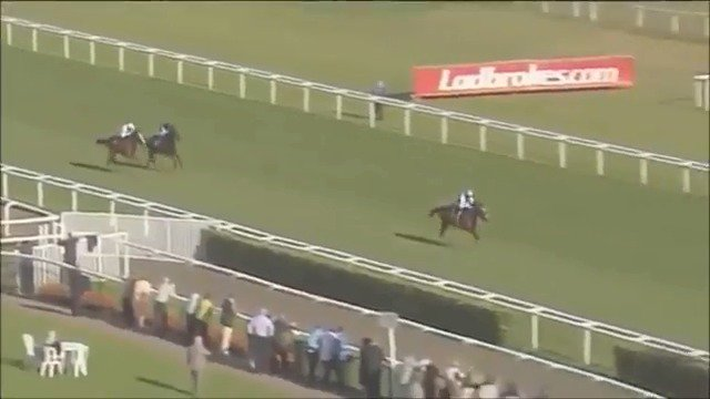 At The Races's photo on frankel