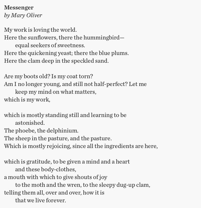 My work is loving the world -- and the poetry of Mary Oliver. Happy Birthday to both.