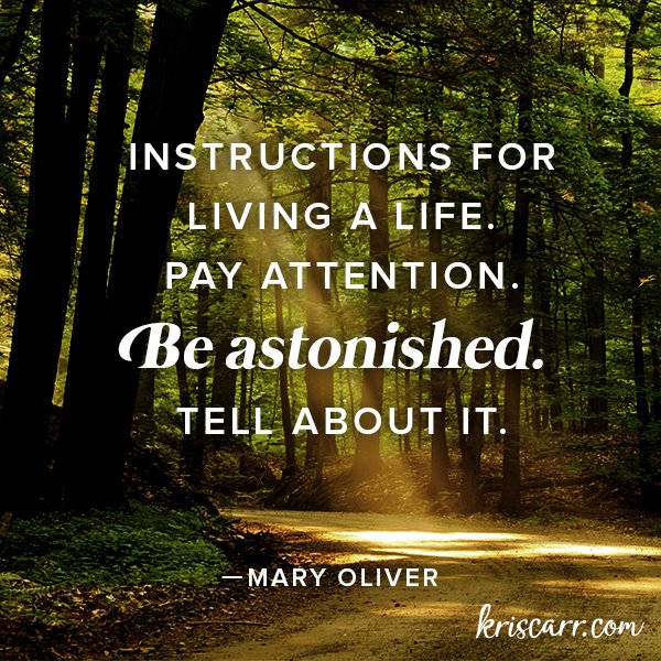 Happy Birthday to Mary Oliver! Learn more about her in this article: