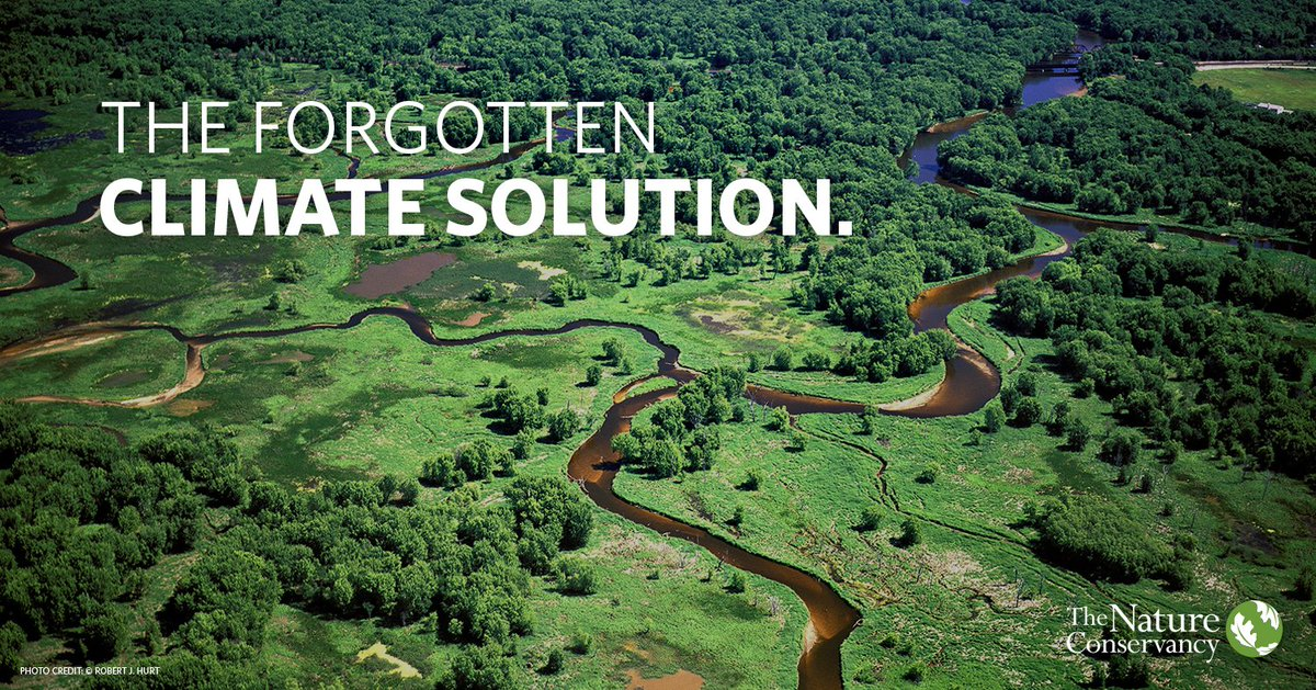 Nature can provide one third of the solution to our climate problem by 2030. https://t.co/Vy1Eecr7VK  #TheForgottenSolution #GCAS2018