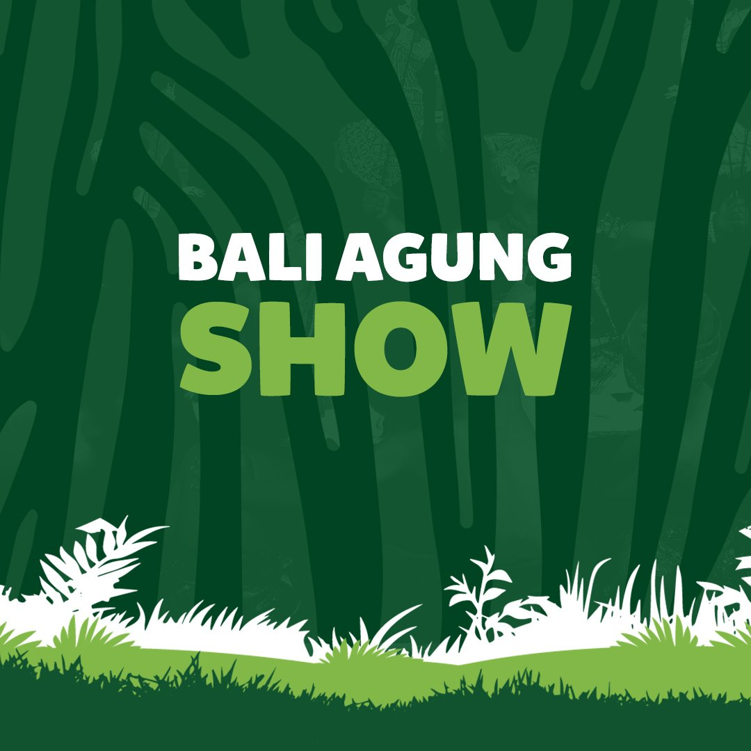 Balisafari Hashtag On Twitter Ticket Night Safari Package Bali Marine Park Witness A World Class Show Featuring 150 Balinese Dancers Musicians Shadow Puppet Masters And Animal All In One Massive Stage Only At