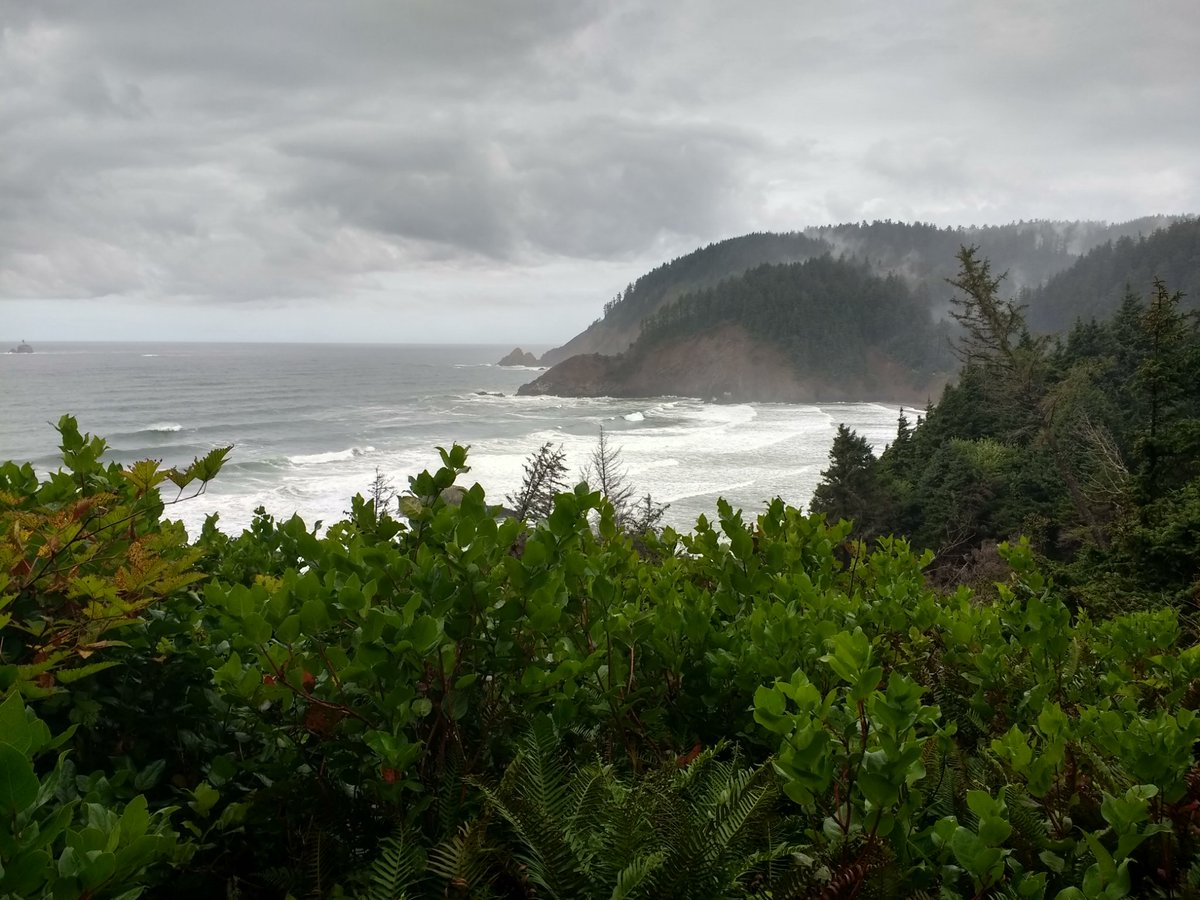 A much-needed day off, a forest and ocean hike near Cannon Beach, OR. Highly recommended.