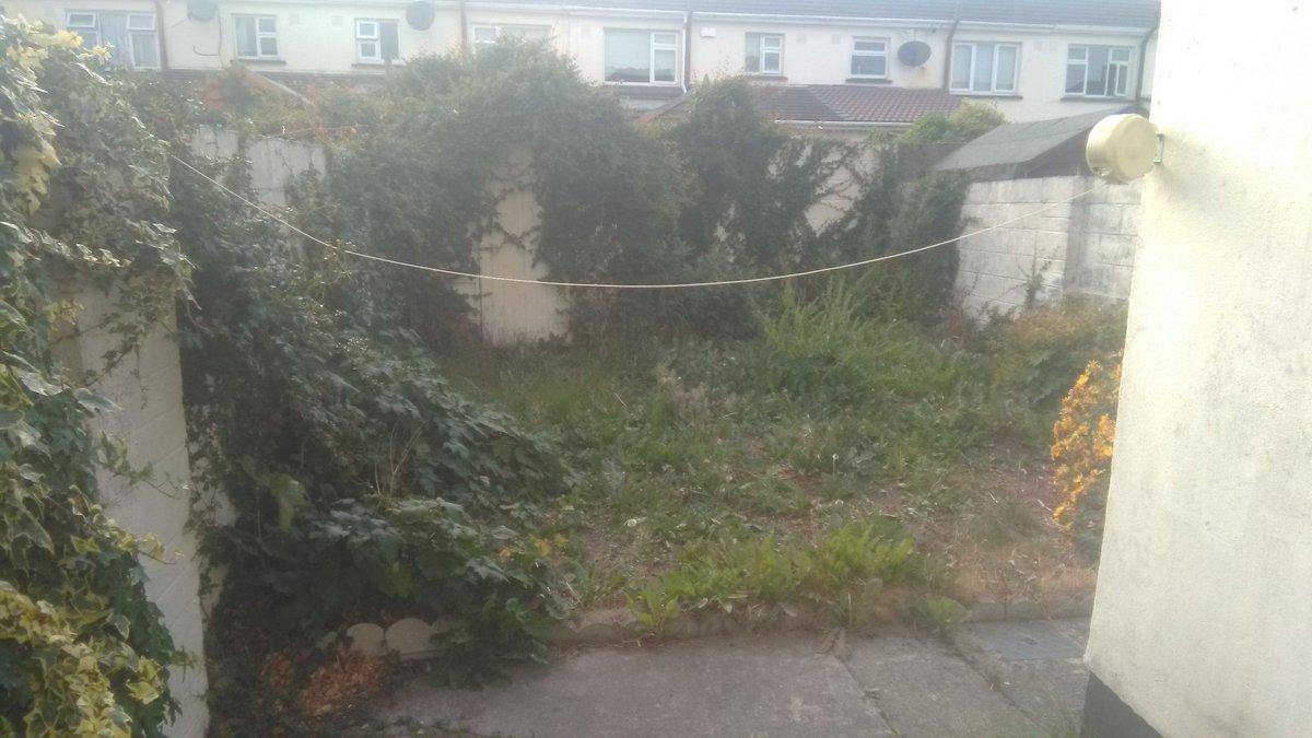 Before photos of a garden in Ashtown