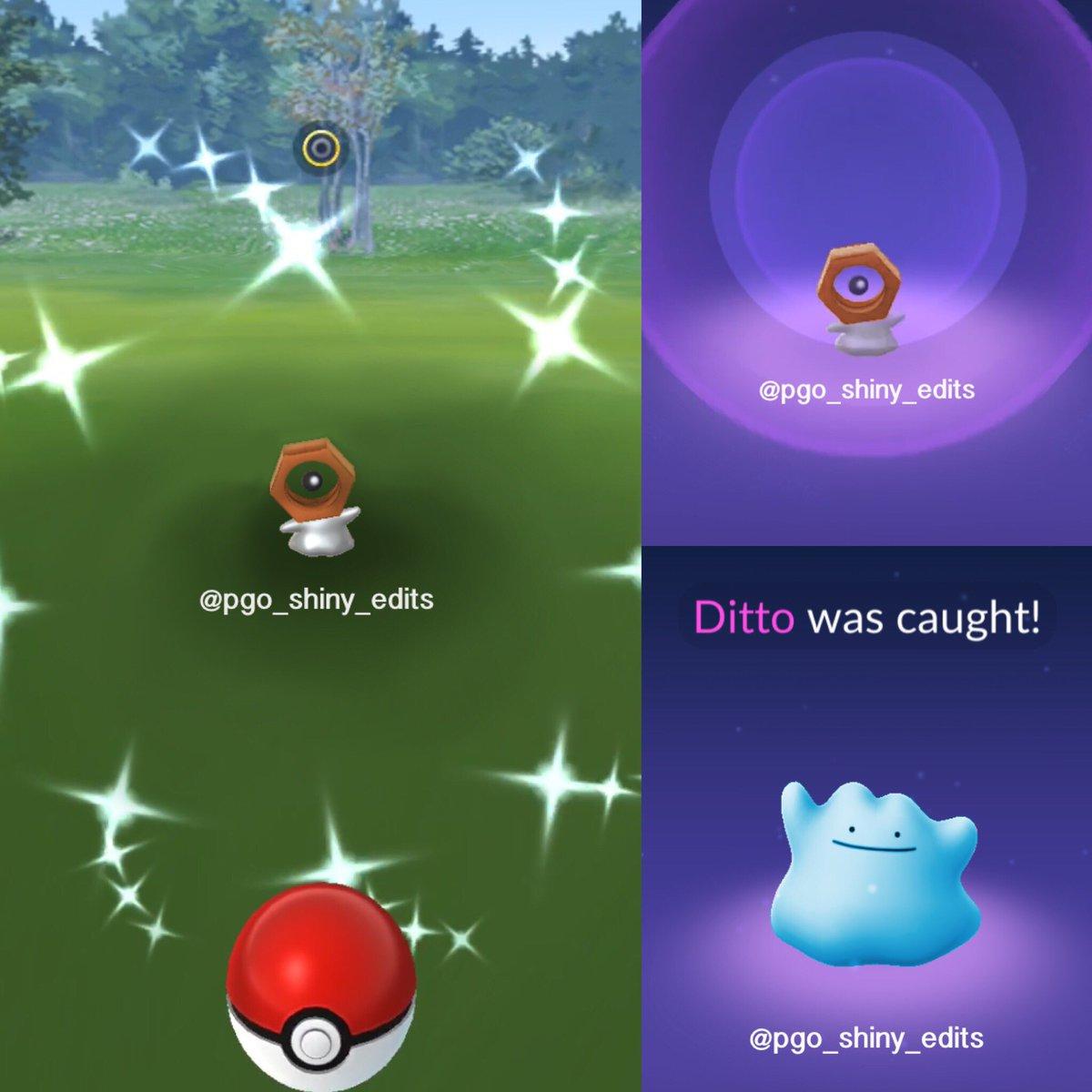 Shiny Ditto Pokemon Go