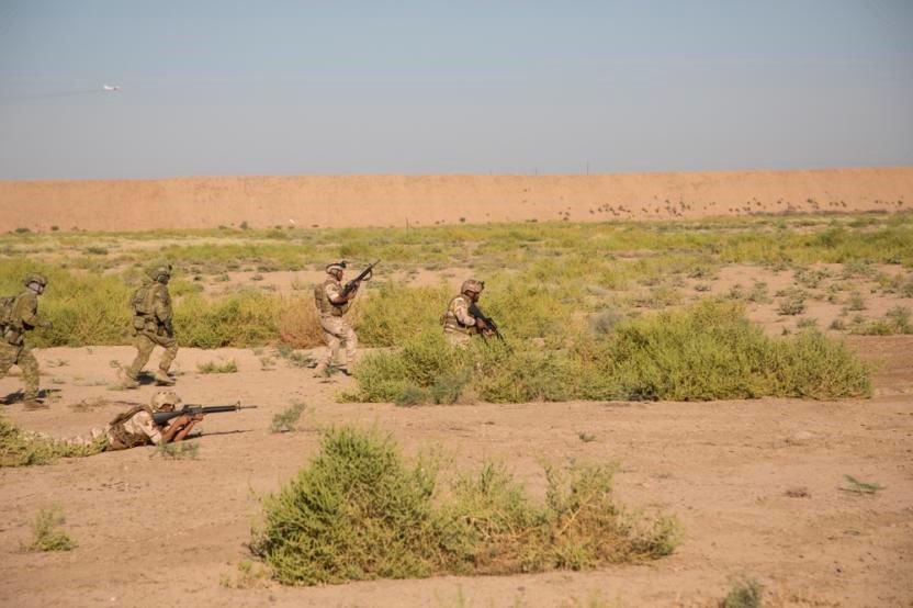 جهود التحالف الدولي لتدريب وتاهيل وحدات الجيش العراقي .......متجدد - صفحة 4 Dn-k5f-U4AASiiM