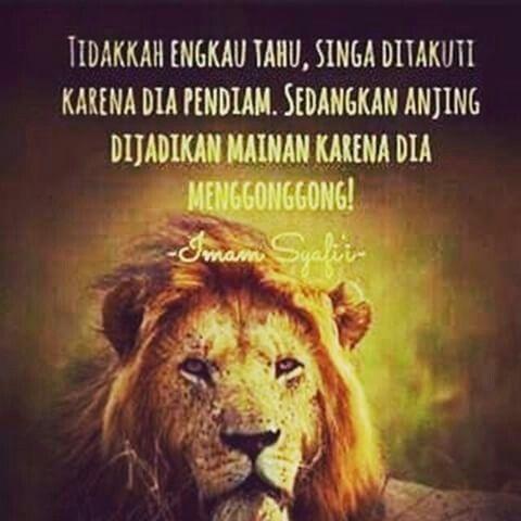 73 Gambar Singa Allah Terbaik
