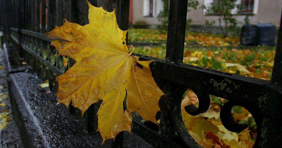 Картинка погода на осень