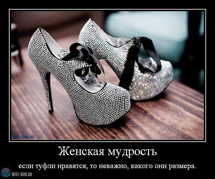 Демотиватор новые туфли