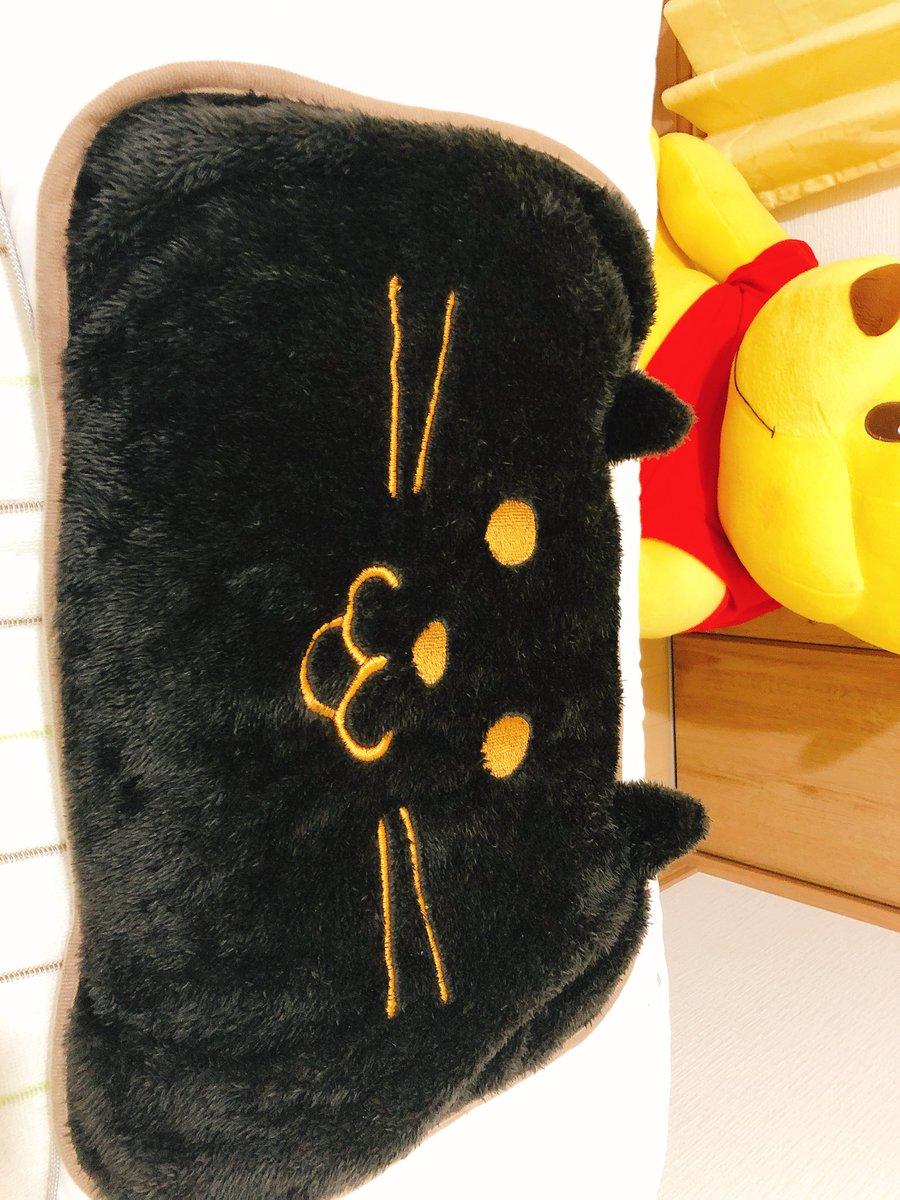 test ツイッターメディア - ダイソーで可愛い枕カバー?見つけた。 さらさらもふもふした素材だから暖かそうな猫ちゃんです(*´-`)  ちょっと小さいけど、いいでしょう!  #DAISO #猫 #枕カバー #200円商品 https://t.co/Gyg7LMC8Xv