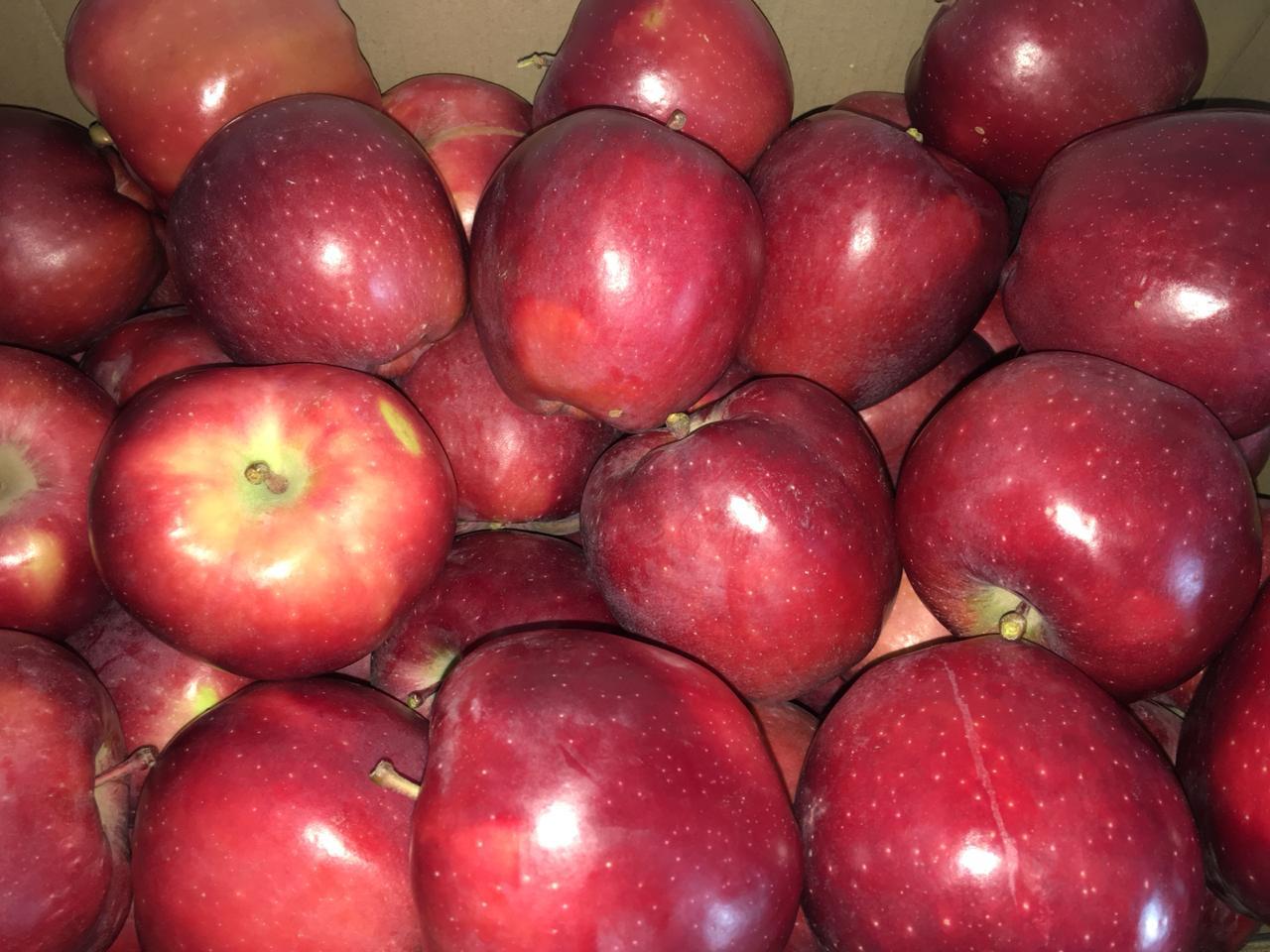 состоит фотки яблоки делишес твери