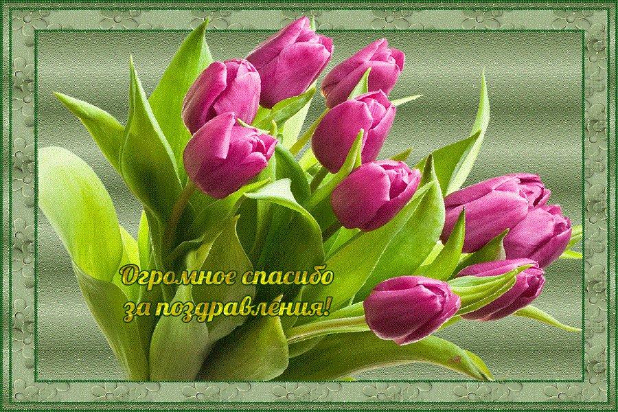 Днем мамы, открытка большое спасибо за поздравления всем
