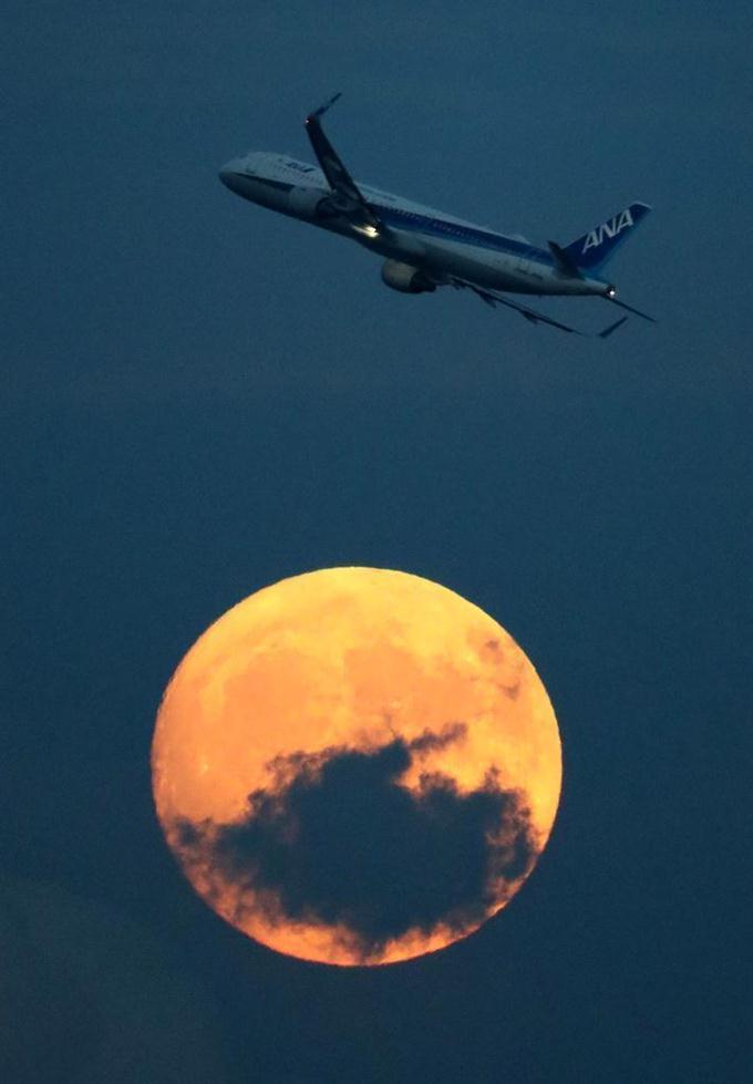 今宵は #中秋の名月。 みなさんは美しい月をご覧になりましたか?  今年は暦の上では24日が中秋の名月にあたりますが、地球と月、太陽の位置関係の微妙なズレにより、天文学的な意味での満月は25日になります。 https://t.co/Purw0Mh2GH