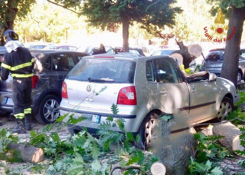 #24set, forte vento in provincia di #Varese: fin dalle prime ore del mattino sono stati svolti dai #vigilidelfuoco 20 interventi per la rimozione di alberi caduti e per la messa in sicurezza di piante pericolanti #soccorsiquotidiani  - Ukustom