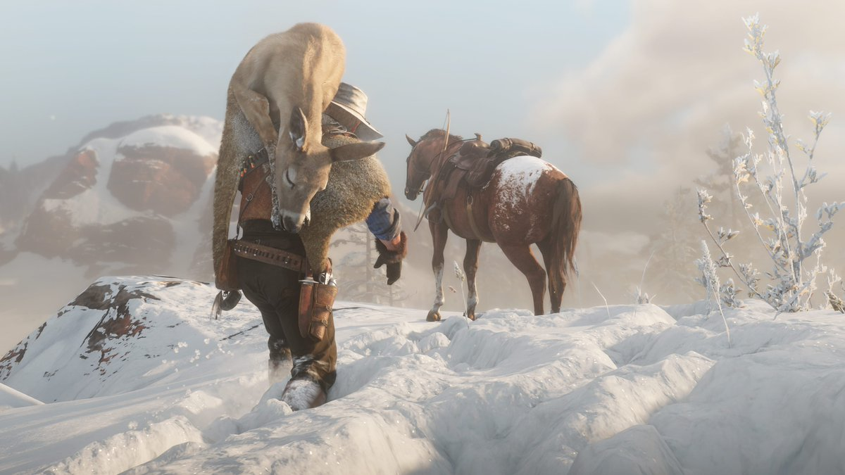 Rockstar Games On Twitter There Are 19 Breeds Of Horse In Red Dead Redemption 2 From Appaloosas And Arabians To Shires To Mustangs And Each Handles Differently With Its Own Characteristics Horses