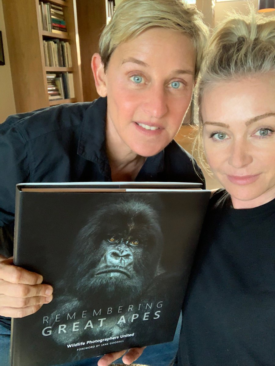 As kids, we think gorillas are as common as zebras or kangaroos, but we're dangerously close to losing these animals forever. For #WorldGorillaDay, I hope you'll help us save them. #RememberingGreatApes bit.ly/RGA_book