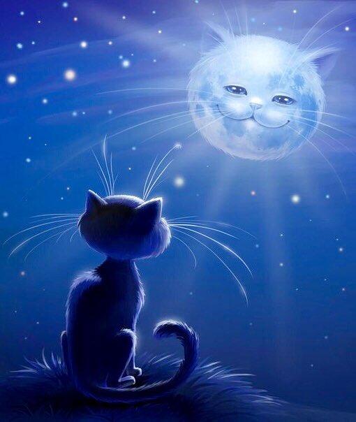 Открытки спокойной ночи доброй ночи котик, пошли курить