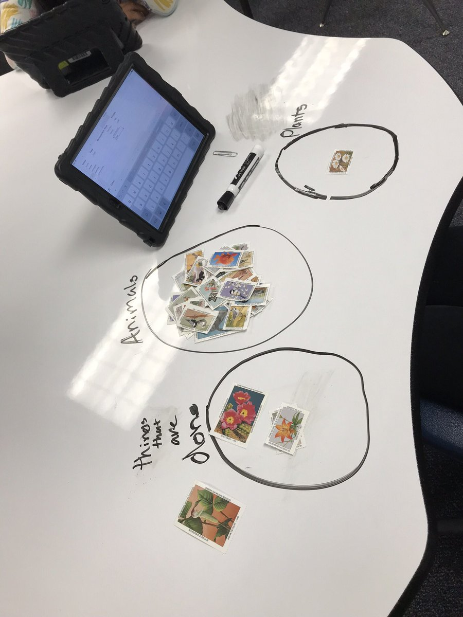 5th graders classifying stamps into kingdoms on dry erase table then typing into a spreadsheet <a target='_blank' href='http://twitter.com/MsPerrysclass1'>@MsPerrysclass1</a> <a target='_blank' href='https://t.co/dM0G2hwq16'>https://t.co/dM0G2hwq16</a>