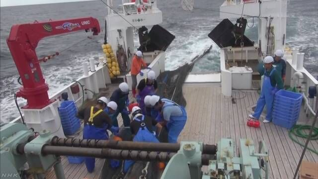試験的な漁業だけにとどめてきたおかげで、こんなすごいことに>震災前に比べてヒラメがおよそ8倍、ナメタガレイがおよそ7倍。/福島沖の漁業資源大幅増 | NHKニュース https://t.co/7KfBD16OKy
