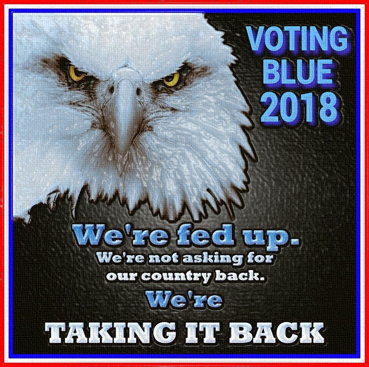 Voting Blue 2018 #VoteBlue #BlueWave #BlueWave2018<br>http://pic.twitter.com/cpRu84vA1g