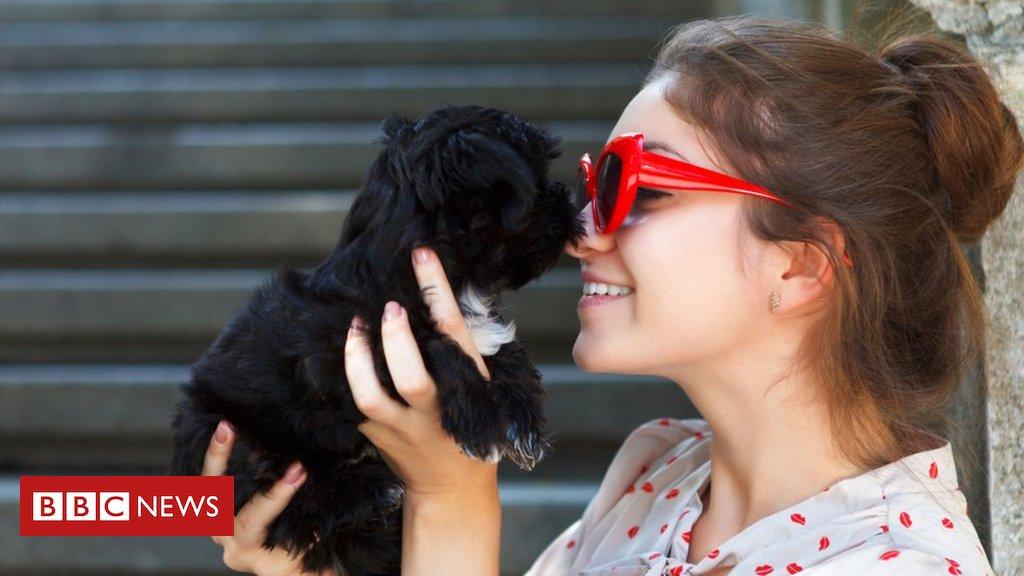 #ArquivoBBC Cães imitam a personalidade dos donos, diz pesquisa https://t.co/TkeCEpm3OU