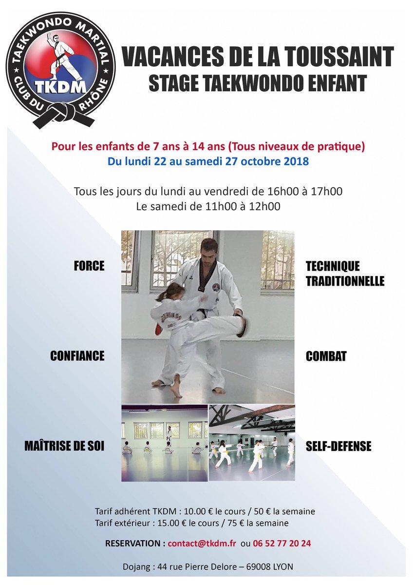 NOUVEAU STAGE!du lundi 22 au samedi 27 octobre 2018TKDM: 44 rue pierre delore 69008 lyon #taekwondo#Martial #lyon #Martial #Sport #enfant #  - FestivalFocus