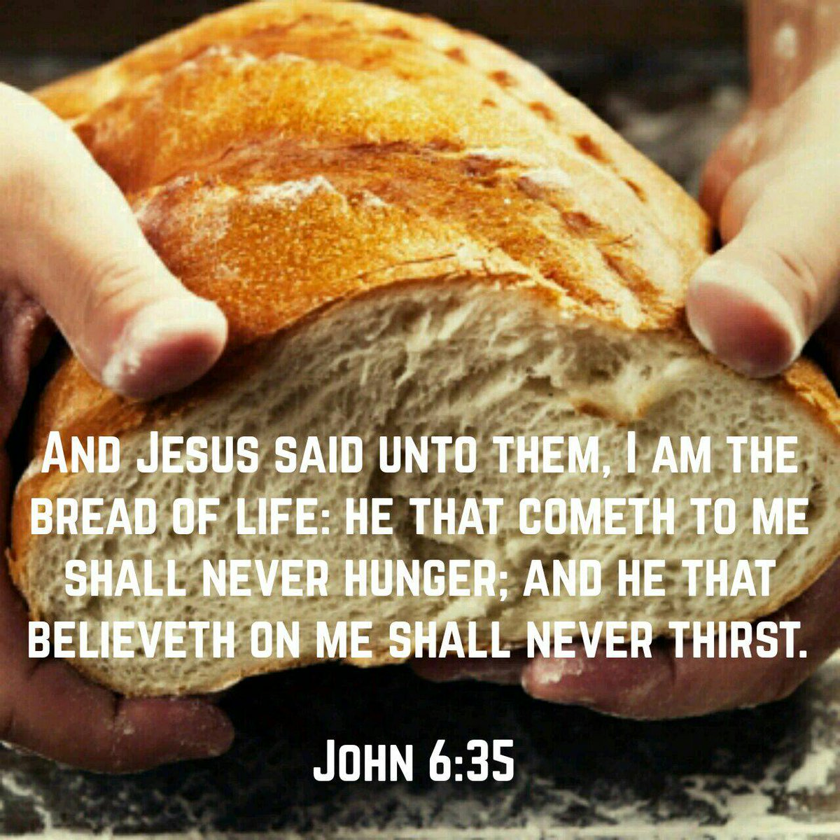 Image result for bread of life kjv