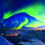 Image for the Tweet beginning: Did you know that @Hurtigruten