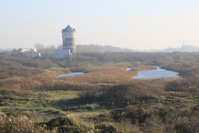 Open dag watertoren en natuurgebied Solleveld https://t.co/uR1p5RBhlN https://t.co/ITrQJK3Ysh
