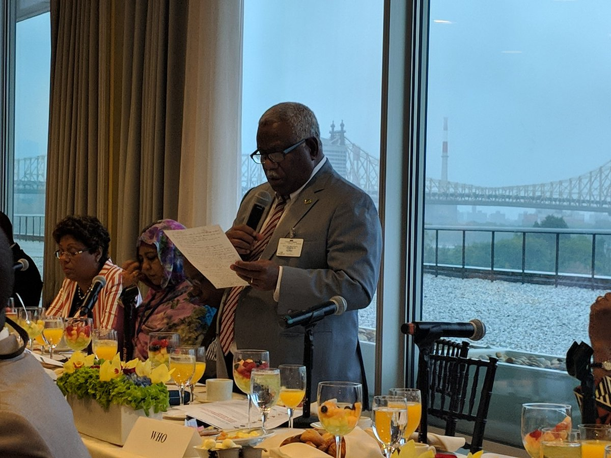 Encouraging to hear PM of Solomon Islands following up #CHOGM2018 by committing to convene a meeting Nov with private sector and other partners to set up a roadmap to eliminate malaria by 2030. #endmalaria #UNGA73