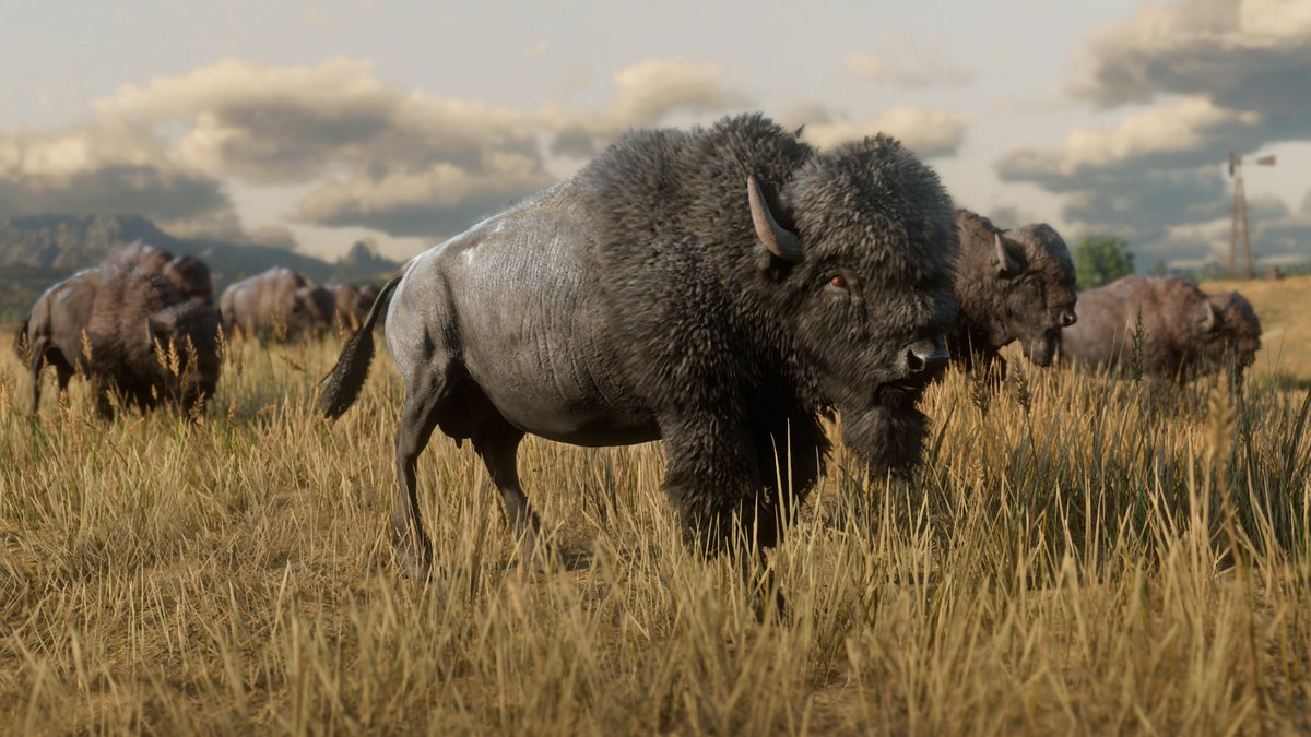 American Bison, Banded Gila Monster, Red Fox and Vultures  New wildlife screens from Red Dead Redemption 2 now added to https://t.co/B6hLIkFYKr